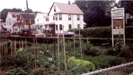 Whittemore Garden in 1997 (photo by Elissa Malcohn)