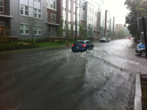 Fawcett St after a heavy rain last summer